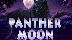 joc slot Panther Moon